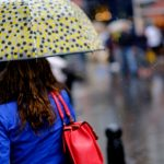 7 Best Bags for Rainy Weather
