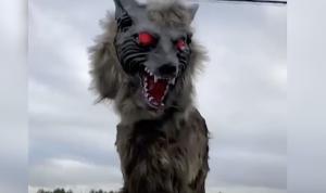 Japanese Town Employs Robot Wolves to Frighten Away Wild Bears